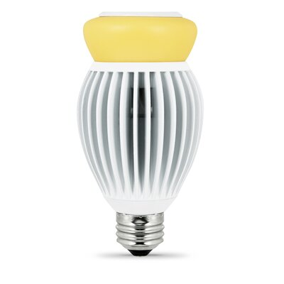 22W Forsted LED Light Bulb