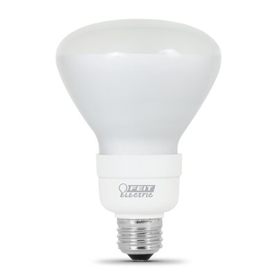 Fluorescent Light Bulb Wattage: 15