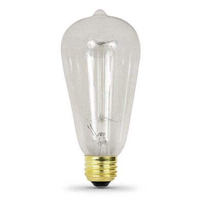 60W 120-Volt Incandescent Light Bulb