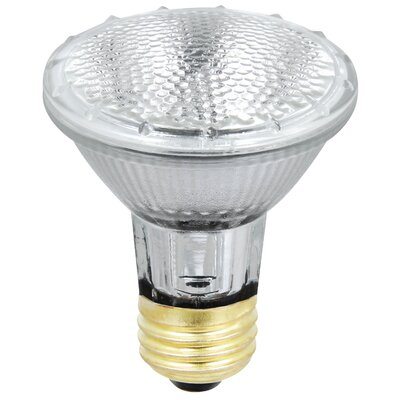 38W Halogen Light Bulb