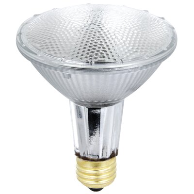 56W 120-Volt Halogen Light Bulb