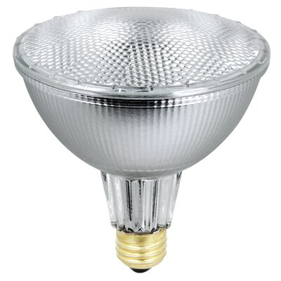70W 120-Volt Halogen Light Bulb