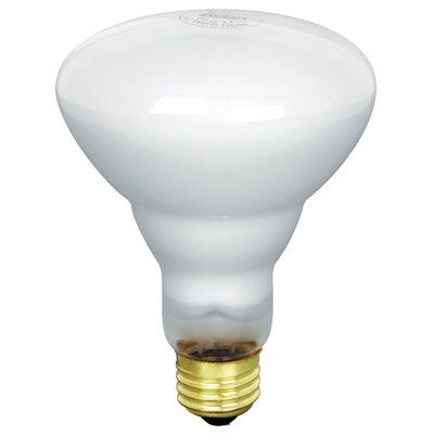 65W 130-Volt Incandescent Light Bulb (Pack of 12)