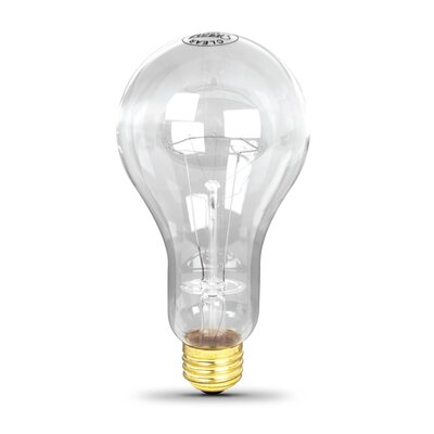 300W 120-Volt Incandescent Light Bulb