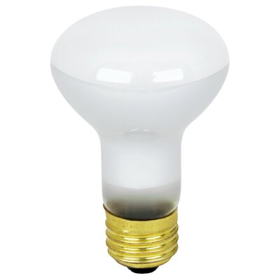 45W 130-Volt Light Bulb