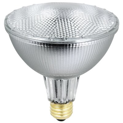 56 W 120-Volt (3000K) Halogen Light Bulb (Pack of 2)