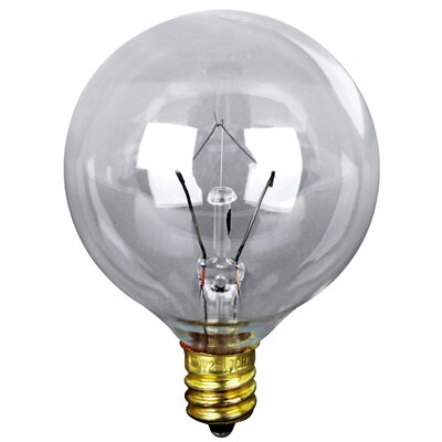 120-Volt Incandescent Light Bulb (Pack of 2) Glass Color: Clear, Wattage: 25W