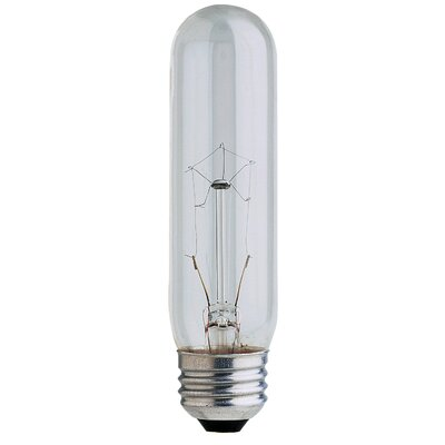 120-Volt Incandescent Light Bulb