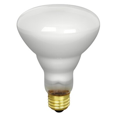 65W Fluorescent Light Bulb Size: 3.75