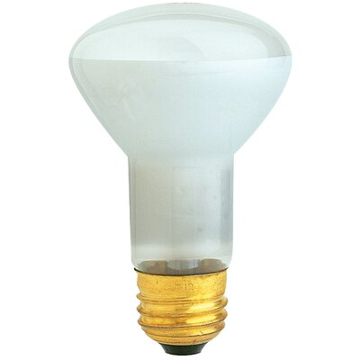 45W 120-Volt Light Bulb
