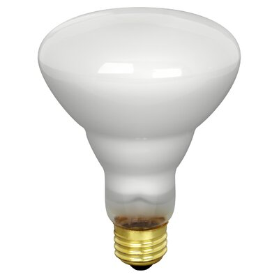 65W 120-Volt Incandescent Light Bulb (Pack of 2)
