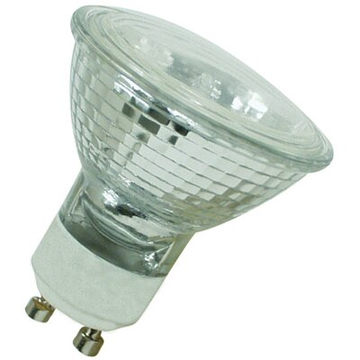 120-Volt Halogen Light Bulb Wattage: 50W
