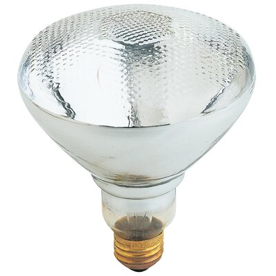 65W Halogen Light Bulb