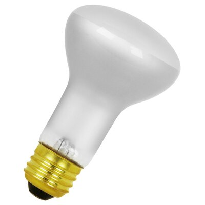 120-Volt Incandescent Light Bulb Wattage: 30W