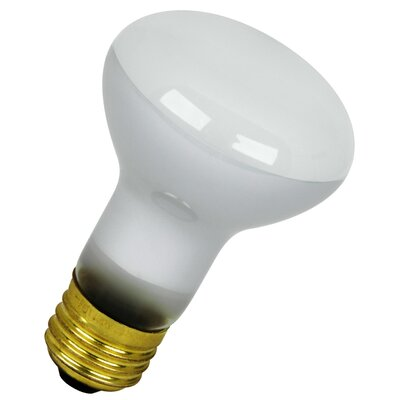 120-Volt Incandescent Light Bulb Wattage: 45W