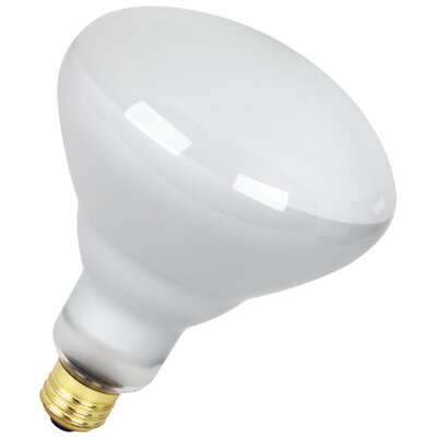 65W 120-Volt Incandescent Light Bulb