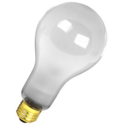 300W Frosted 120-Volt Incandescent Light Bulb