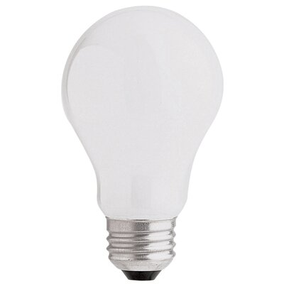 25W 120-Volt Incandescent Light Bulb (Pack of 4)