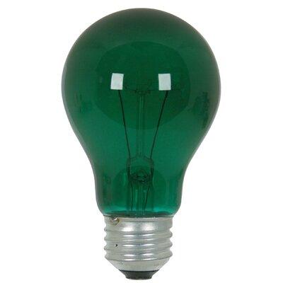 25W Green 120-Volt Incandescent Light Bulb
