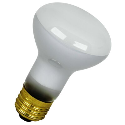120-Volt Light Bulb (Pack of 2) Wattage: 45W