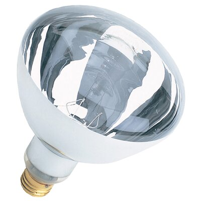 120-Volt Incandescent Light Bulb (Set of 12) Wattage: 250W, Glass Color: Clear