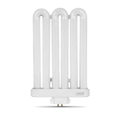 Frosted Compact Fluorescent Light Bulb Wattage: 55W