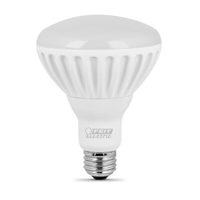 65W (2700K) LED Light Bulb
