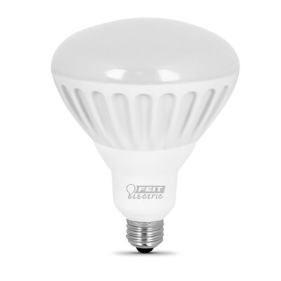 100W (2700K) LED Light Bulb