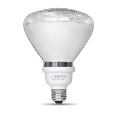 18W (2700K) Fluorescent Light Bulb
