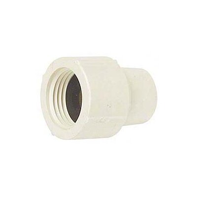 CPVC Female Adapter (Set of 10) Size: 1