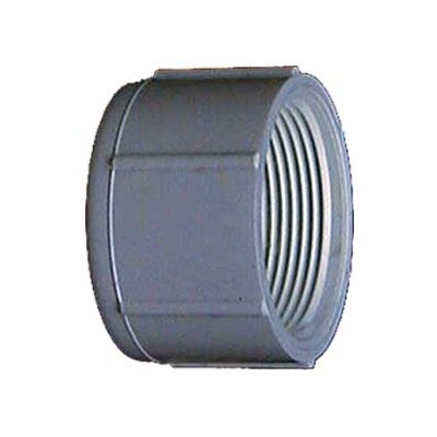 PVC (Schedule 40) Threaded Caps (Set of 10) Size: 0.5