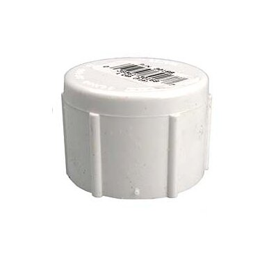PVC (Schedule 40) Threaded Caps (Set of 10) Size: 1