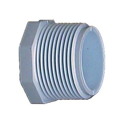 PVC Threaded Plugs (Set of 10) Size: 0.75
