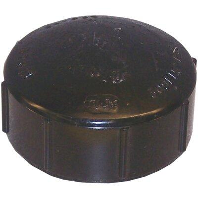 ABS Cap