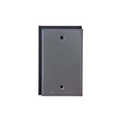Single Gang Blank Switch Plate Cover Color: Gray