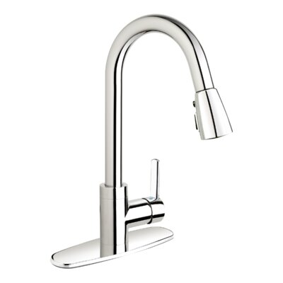Essential Style Single Handle Pull Down Standard Kitchen Faucet Finish: Polished Chrome