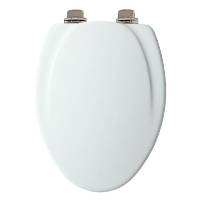 Wood Slow-Close Toilet Seat Decal Hinge Finish: Brass