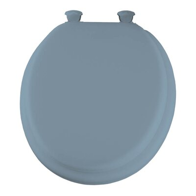 Lift-Off Toilet Seat Finish: Sky Blue