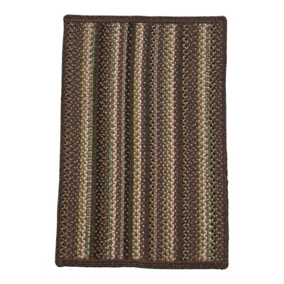 High Plains Brown Indoor/Outdoor Rug