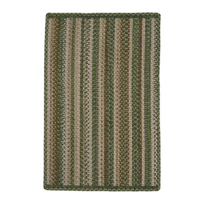 Mountain View Green Indoor/Outdoor Rug