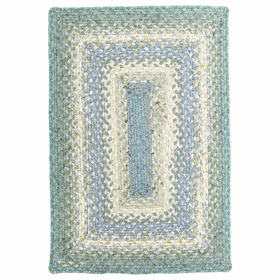 Cotton Braided Baja Blue Area Rug Rug Size: Rectangle 26 x 18