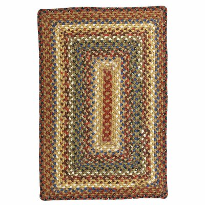 Cotton Braided Biscotti Area Rug Rug Size: Rectangle 4 x 6