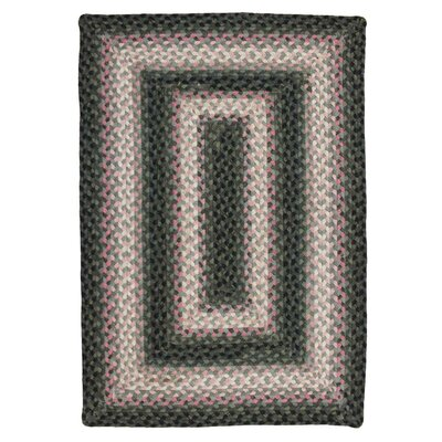 Oleander Braided Area Rug Rug Size: Oval 2 x 3