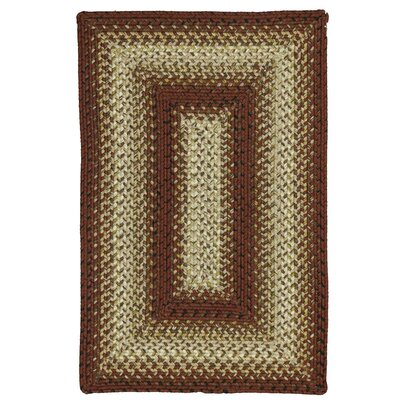 Jasper Braided Indoor/Outdoor Area Rug Rug Size: Oval 26 x 6