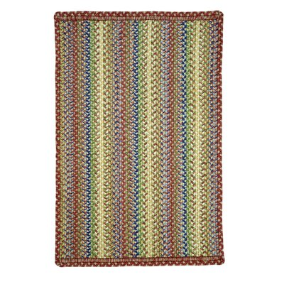 Braided Doormat Color: Venice