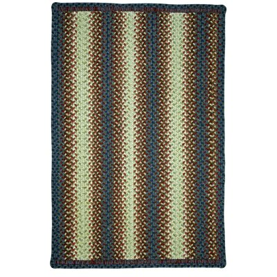 Braided Doormat Color: Rocky Trail