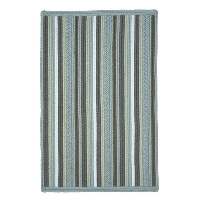Portsmouth Blue Indoor/Outdoor Area Rug Rug Size: 6' x 9'