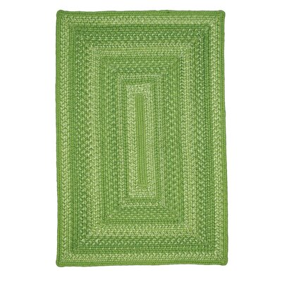 Meadow Green Indoor/Outdoor Area Rug Rug Size: 18 x 26