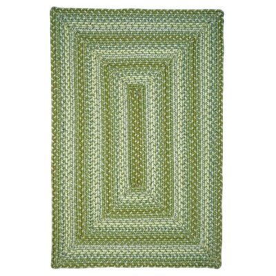 Sand Dune Green Indoor/Outdoor Area Rug Rug Size: 23 x 39