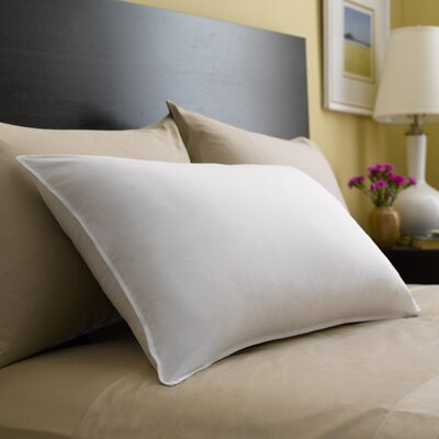 Spring Air� Activecool� Fiber Pillow Size: 20 x 36